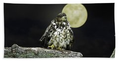Beach Towel featuring the photograph Young Bald Eagle By Moon Light by John Haldane
