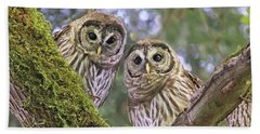 Young Barred Owlets  Beach Towel