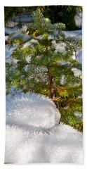 Young Winter Pine Beach Towel