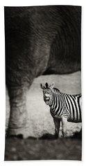Zebra Barking Beach Towel