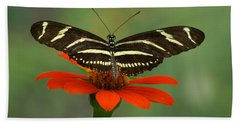 Zebra Longwing Butterfly Beach Sheet