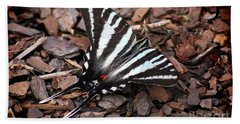 Zebra Swallowtail Butterfly Beach Sheet