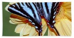 Zebra Swallowtail Butterfly Beach Towel