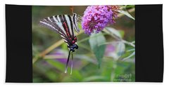 Zebra Swallowtail Butterfly On Butterfly Bush  Beach Sheet