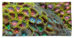 Zoanthids Beach Towel