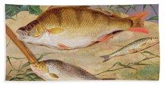 An Angler's Catch Of Coarse Fish Beach Towel