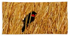 Blackbird In The Reeds Beach Towel