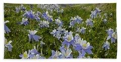 Colorado Blue Columbine Flowers Beach Towel
