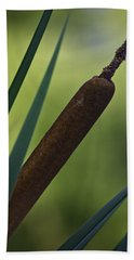 Common Cattail Beach Towel