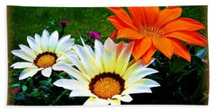 Garden Daisies Beach Sheet