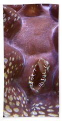 Giant Clam In Pink With Yellow Spots Beach Sheet