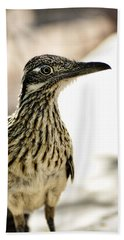 Greater Roadrunner  Beach Towel by Saija  Lehtonen