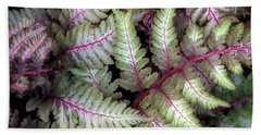 Beach Towel featuring the photograph Japanese Painted Fern by Chris Anderson
