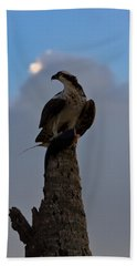 Osprey With Catch Beach Towel