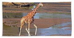 Reticulated Giraffe Beach Towel