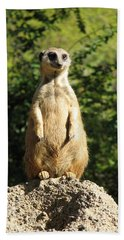 Beach Sheet featuring the photograph Sentinel Meerkat by Carla Parris