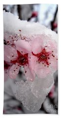 Spring Blossom Icicle Beach Sheet by Kerri Mortenson