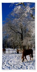 Thoroughbred Horses, Mares In Snow Beach Towel