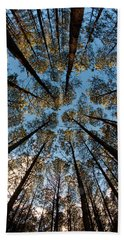 Whispering Pines Beach Towel by Dan Wells