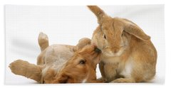 Rabbit And Puppy Beach Towel