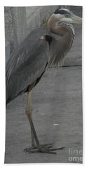 Great Blue Heron Beach Towel by Donna Brown