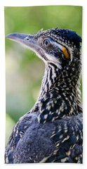 Greater Roadrunner  Beach Sheet by Saija  Lehtonen