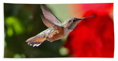 Hummingbird 3 Beach Towel