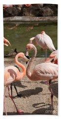 Flamingos Beach Sheet by Carol Ailles