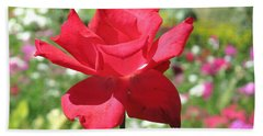 A Beautiful Red Flower Growing At Home Beach Towel by Ashish Agarwal