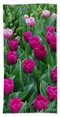 A Field Of Tulips Series 2 Beach Towel by Eva Kaufman