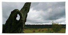 Beach Towel featuring the photograph A Ok In A Field Of Hay by Lorraine Devon Wilke