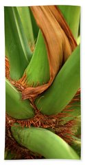 Beach Towel featuring the photograph A Palmetto's Elbows by JD Grimes