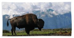 Beach Towel featuring the photograph Alaskan Buffalo by Katie Wing Vigil