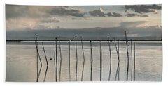 Albufera Gris. Valencia. Spain Beach Sheet