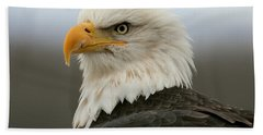 American Bald Eagle Portrait Beach Towel by Myrna Bradshaw