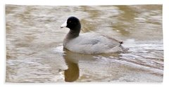 American Coot 1 Beach Sheet
