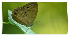 Beach Towel featuring the photograph Appalachian Brown by JD Grimes