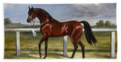 Arabian Horse Beach Sheet