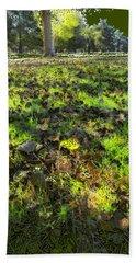 Beach Towel featuring the digital art Autumn Colors by Anne Mott
