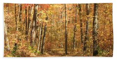 Beach Towel featuring the photograph Autumn In Minnesota by Penny Meyers