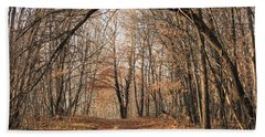 Beach Towel featuring the photograph Autumn In The Woods by Penny Meyers