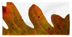 Autumn Leaf Macro Photograph Beach Towel