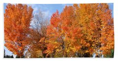 Beach Towel featuring the photograph Autumn Leaves by Athena Mckinzie