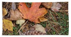 Beach Towel featuring the photograph Autumn Leaves by Donna  Smith