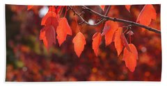 Beach Towel featuring the photograph Autumn Leaves In Medford by Mick Anderson