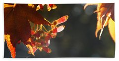 Beach Sheet featuring the photograph Autumn Maple by Mick Anderson