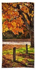 Autumn Maple Tree Near Road Beach Towel