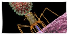 Bacteriophage T4 Injecting Beach Sheet