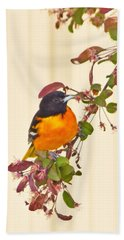 Baltimore Oriole Beach Sheet