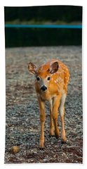 Bambi Beach Towel by Sebastian Musial